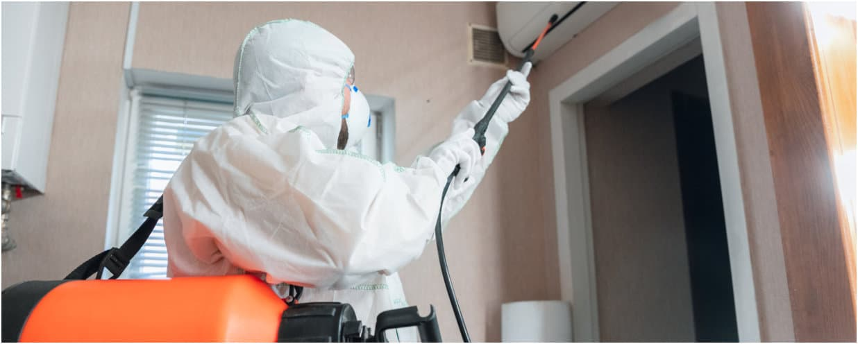 a man disinfecting a house